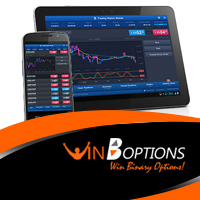 Mobile de WinOptions